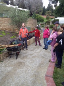 Our students and Horticulturalist Rainer Oberle deciding what needs a bit of pruning in the Herb and Olive bed.