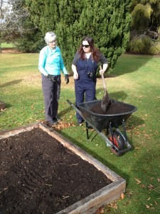 Horticulture Certificate 2 students add compost to the bed before planting out.