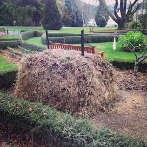 Tasmanian Horticulture students at the royal tasmanian botanical gardens created this compost heap